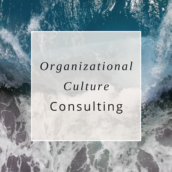 "Ocean image with ""organizational culture consulting"" written on it."
